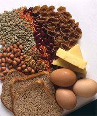 Proteins; making you harder better faster stronger!