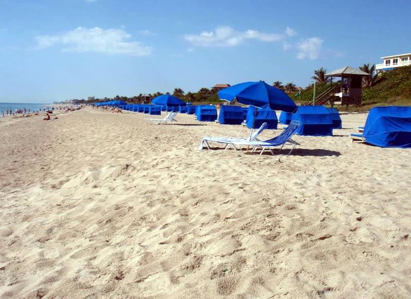 Delray beach florida for Delray beach fishing