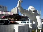 Circus Circus Las Vegas Pics