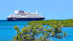 Top 10 Cruise lines