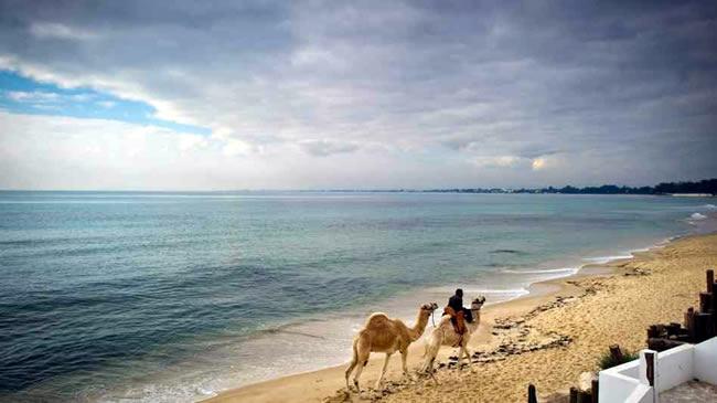 Sidi Bou Beach