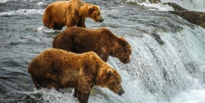 Alaska Travel Guide – Alaska Vacation Advice
