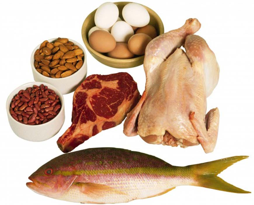 eat_more_proteins-