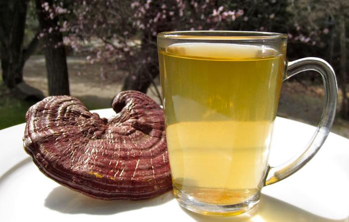 Reishi mushroom Tea