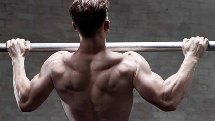 Pull-Up and Chin-Up