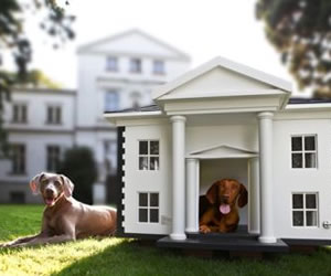World Most Expensive Pet Homes