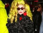 Lady Gaga pics 2014