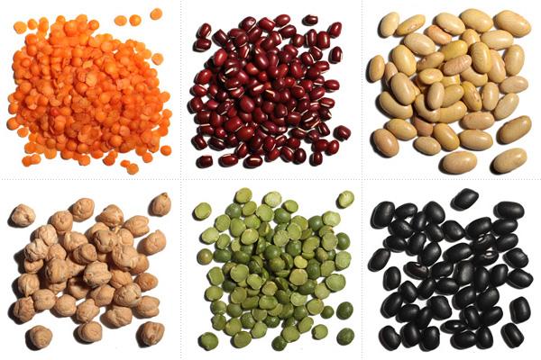 beans_outro_