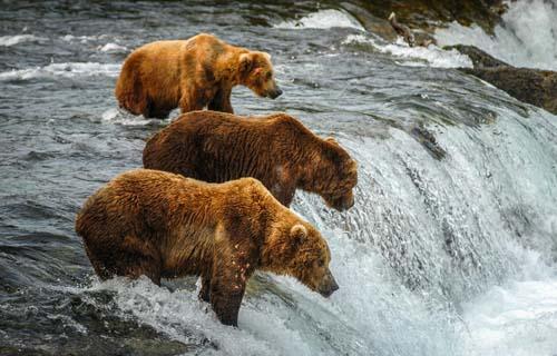 Alaska travel tips and guide