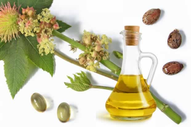 Castor_oil_for_hair