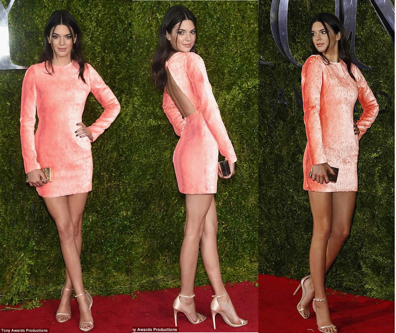 Kendall Jenner Mini Dresses