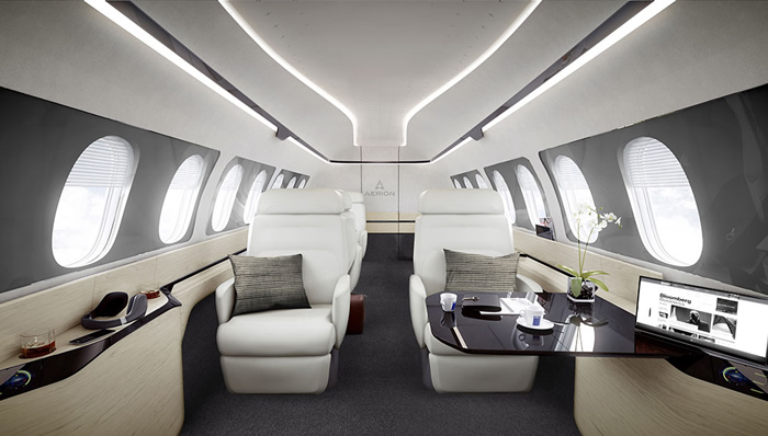 erion as2 business jet