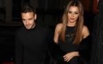 Liam Payne's Girlfriend Cheryl Steps Out Amid Rumors She's Pregnant