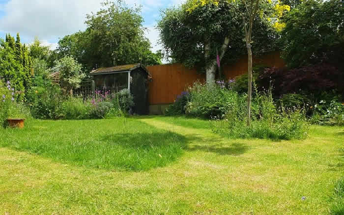 The basics: Lawn Care